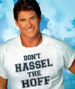 dont hassel the hoff