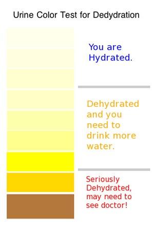 urine-teller-1