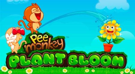 pee-monkey-plant-bloom-1